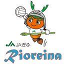 【イベント情報】ファン感謝デー2019「リオレーナのミニ運動会」の開催と参加者募集について