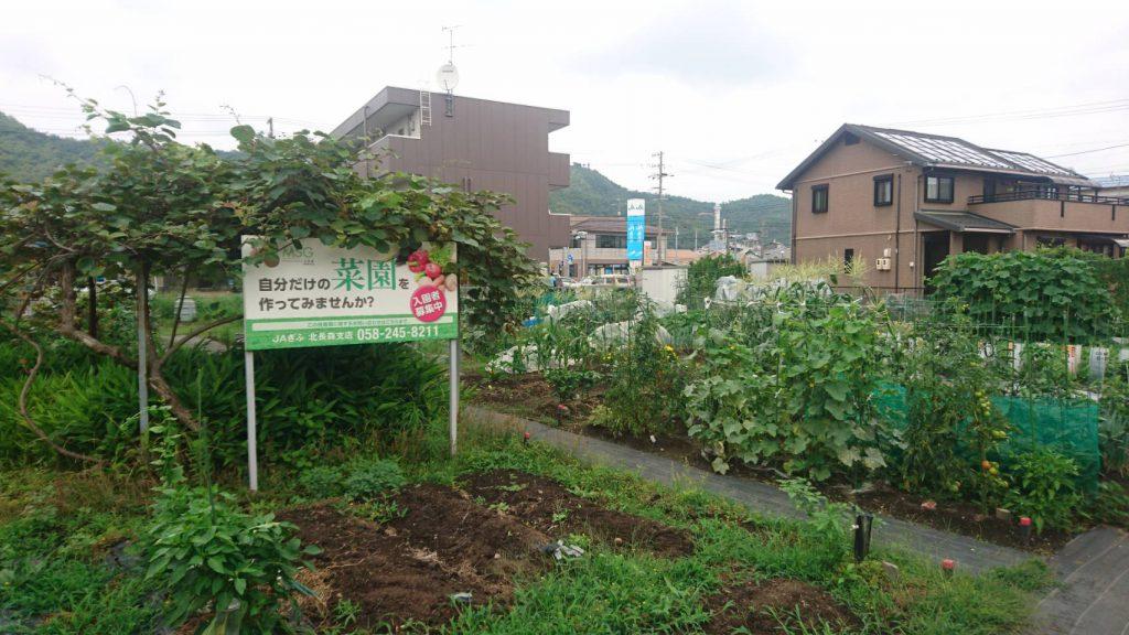 My Sunny Garden 北長森(長森本町)