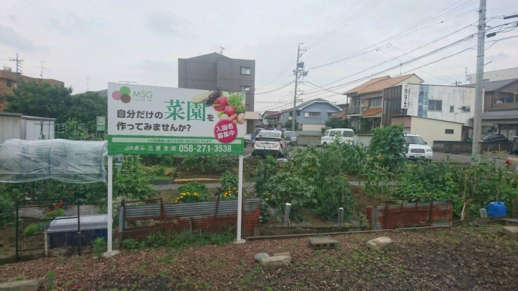 My Sunny Garden 三里
