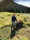 【農山村のふるさとづくり】無観客稲刈りの実施